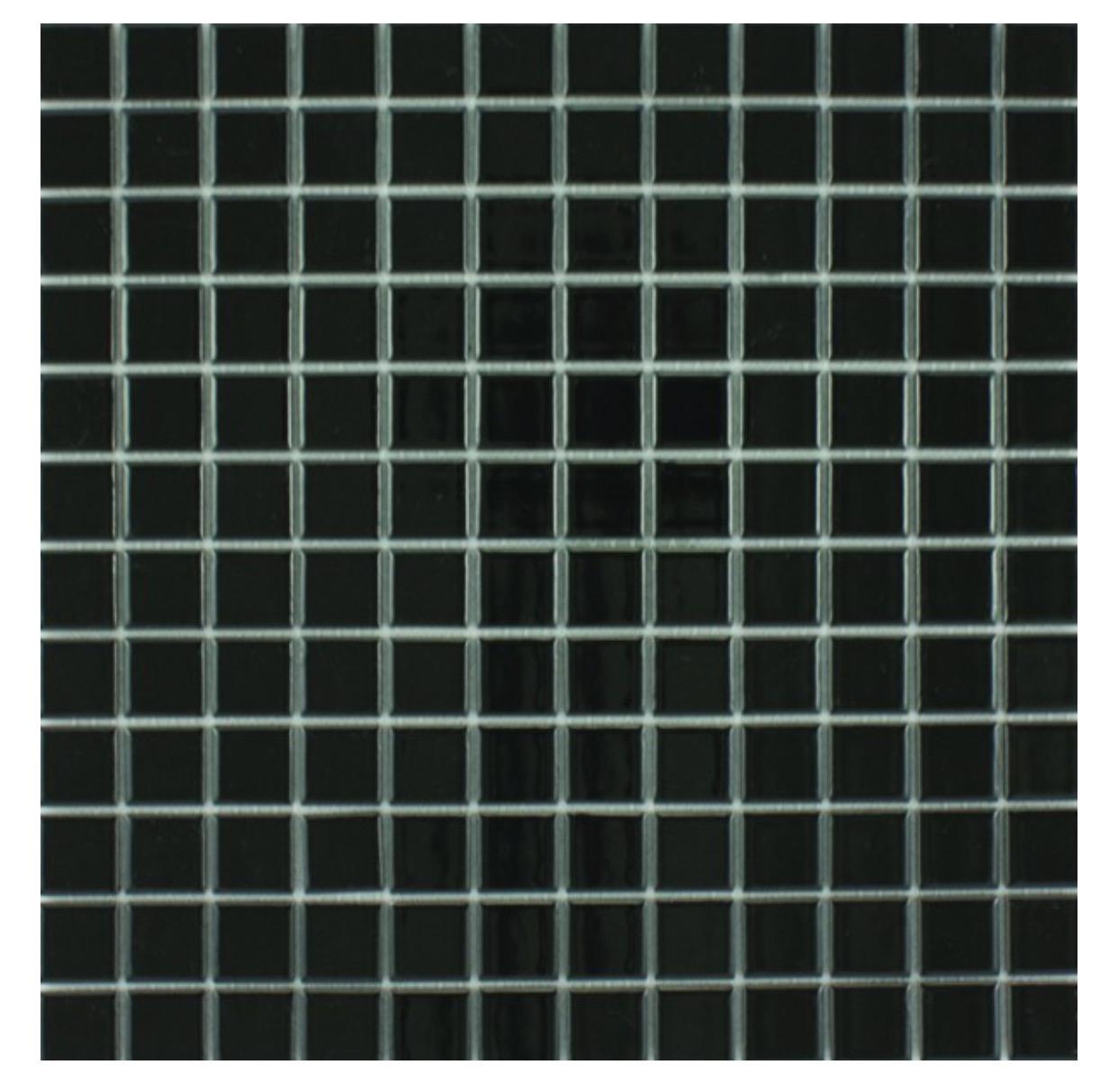 Waxman Ceramics Ceramic Pool Gloss Black Cg 890 300mm X 300mm